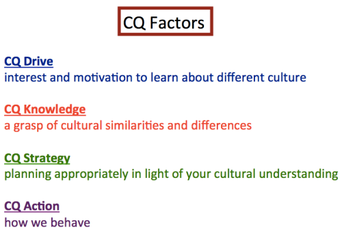 how to develop cultural intelligence